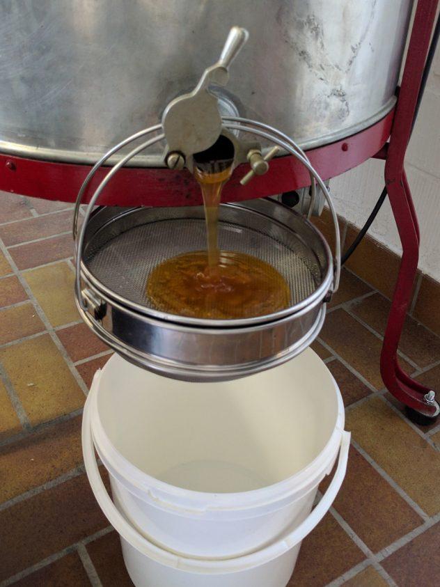 Honigernte: Honig läuft aus Schleuder